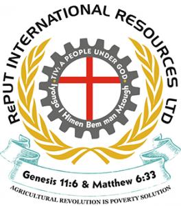 RePut International Resources Ltd